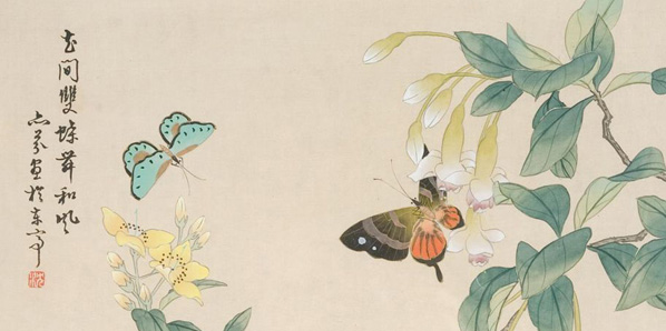 butterfly-japanese-aps