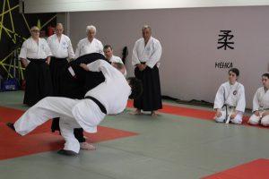 Seminario di Iaido e Aikido presso Slovenska Aikido Zveza